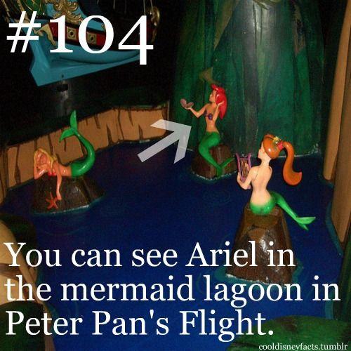 Cool Disney Facts: You can see Ariel in the Mermaid Lagoon in Peter Pan's flight. Hmmmnnn ... True?