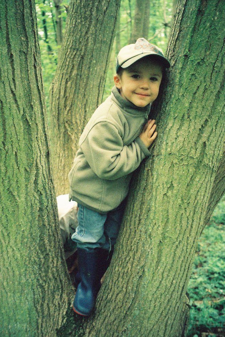193 best nature based preschool images on pinterest playground