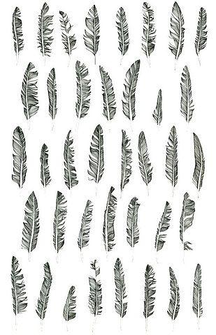 feathers for texture