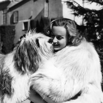 Vintage Photos: Celebrities And Their Favorite Dogs: LAist
