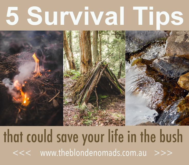 Some basic bush survival knowledge could save your life, read our top 5 tips to ensure you are well prepared in case things don't go to plan. www.theblondenomads.com.au