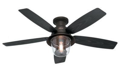 Hunter Fan Allegheny Low Profile™ - 59009