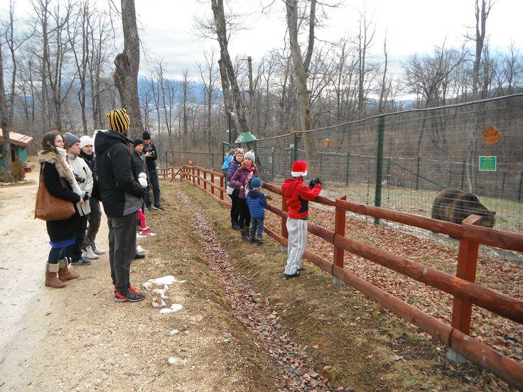 Family Travel Ecotourism Temples And More - Exploramum & Explorason