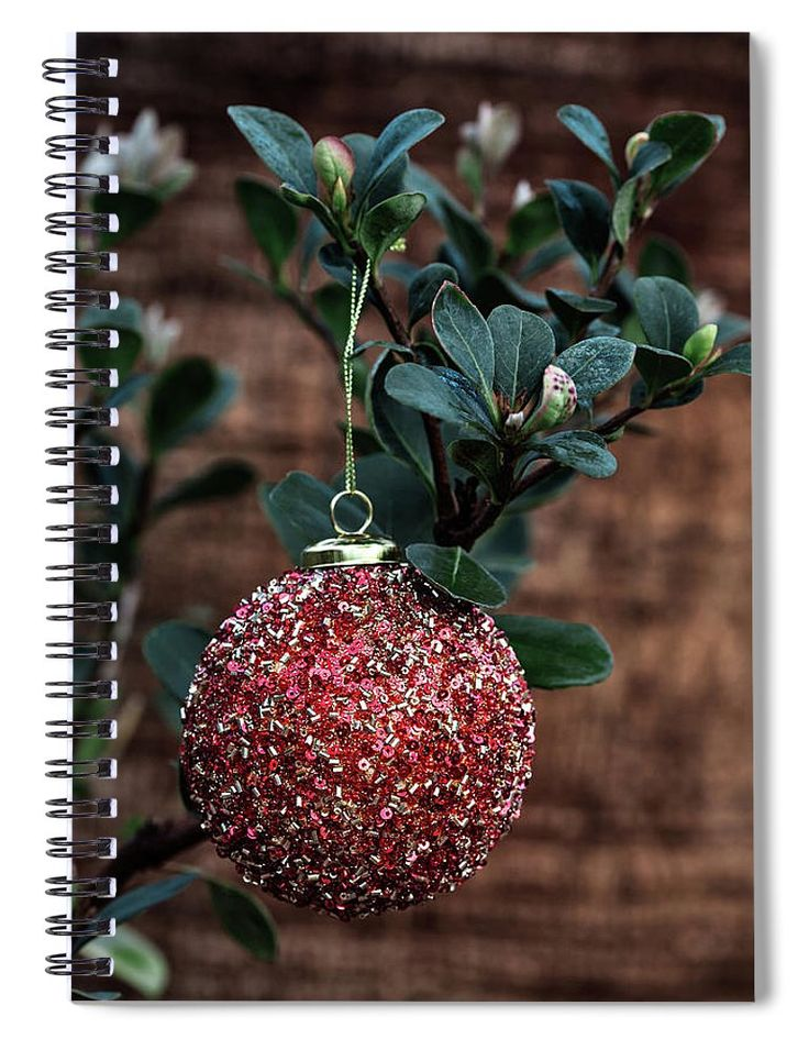 "Spiral Notebook featuring the photograph Hanging Red Ball by Evgeniya Lystsova. Red Christmas Ball Hanging on the Plant in December, Winter Holiday Concept. Our spiral notebooks are 6"" x 8"" in size and include 120 pages which are lined on both sides. The Artwork is printed on the front cover. #Spiral #NoteBook #Gifts #Christmas #Prints #OfficeDecor"