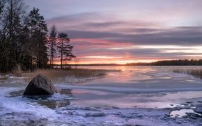 Wallpaper by section: Landscapes