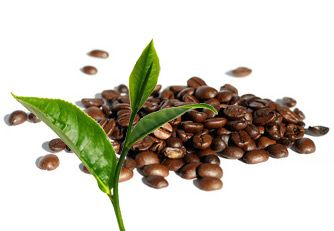 Koffeingehalt in mg – Kaffee, Cola, Tee, Mate usw.