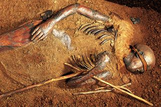 Bog Bodies of the Iron Age- More than a thousand preserved bodies and skeletons have emerged from the peat bogs of Northwest Europe, and scientists now have the tools to study the remains in such detail that they can, in a sense, resurrect ancient people.