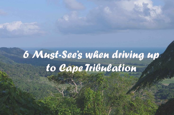 An itinerary of beautiful places you should not miss when driving up to Cape Tribulation!