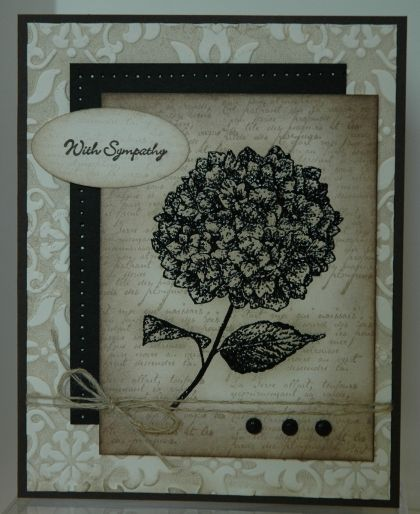 'Because I Care' Embossed Card by feijoa - Cards and Paper Crafts at Splitcoaststampers