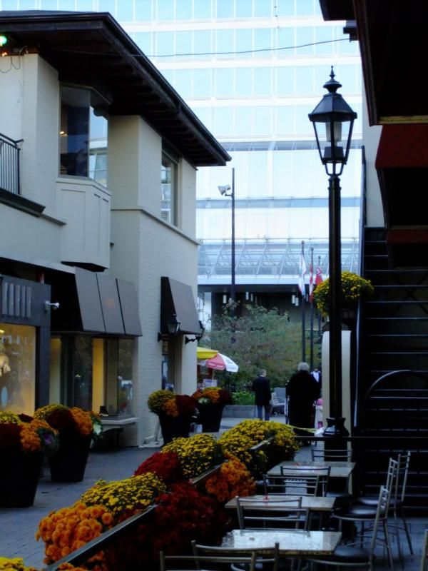 Old York Lane Yorkville Annex Toronto Victoria Boscariol Chestnut Park Real Estate #yorkville #toronto