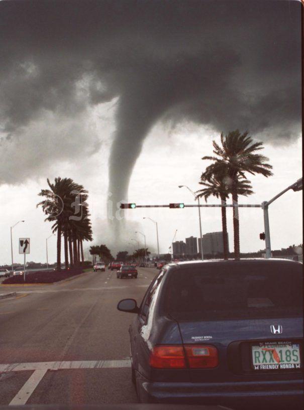Forex tornado trend trading for a living