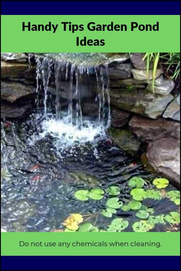 Key Approaches For Getting The Best From Your Pond Garden Easy