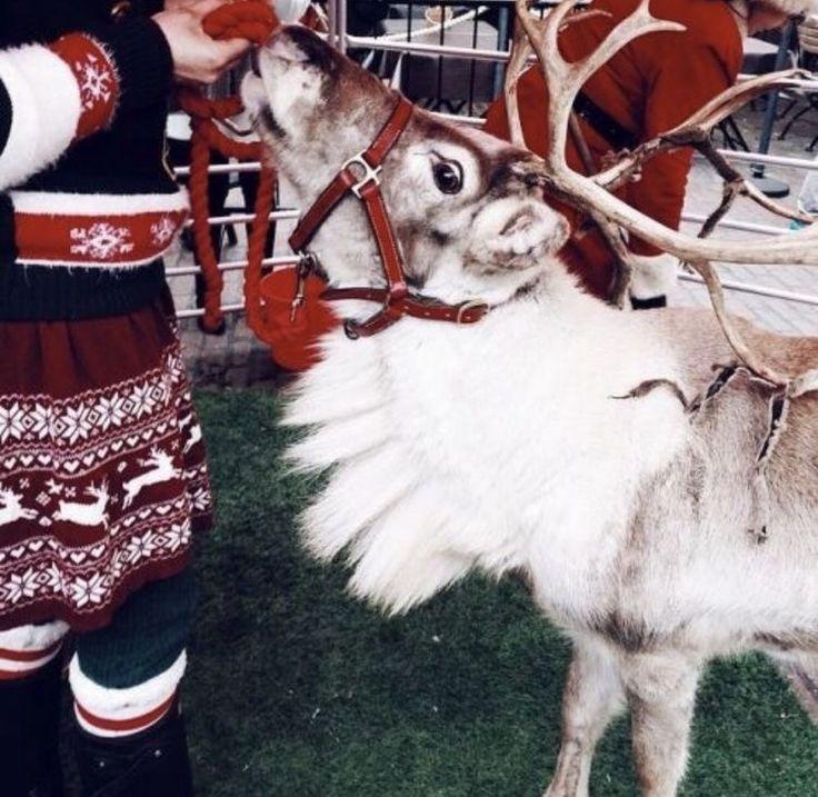 Pinterest Chloechristner Winter Christmas Christmas Aesthetic