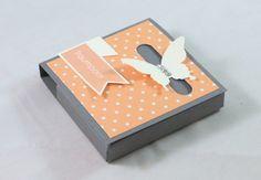 Schmetterlingsbox
