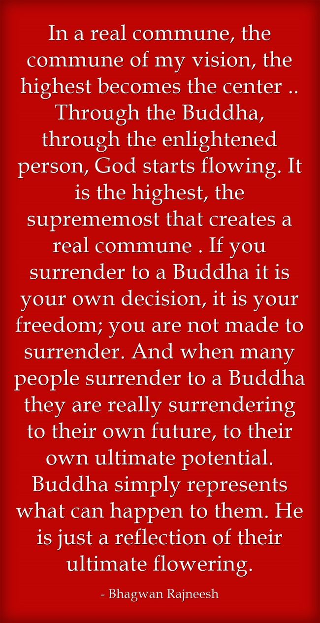 In a real commune, the commune of my vision, the highest becomes the center .. Through the Buddha, through the enlightened person, God starts flowing. It is the highest, the suprememost that creates a real commune . If you surrender to a Buddha it is your own decision, it is your freedom; you are not made to surrender. And when many people surrender to a Buddha they are really surrendering to their own future, to their own ultimate potential. Buddha simply represents what...