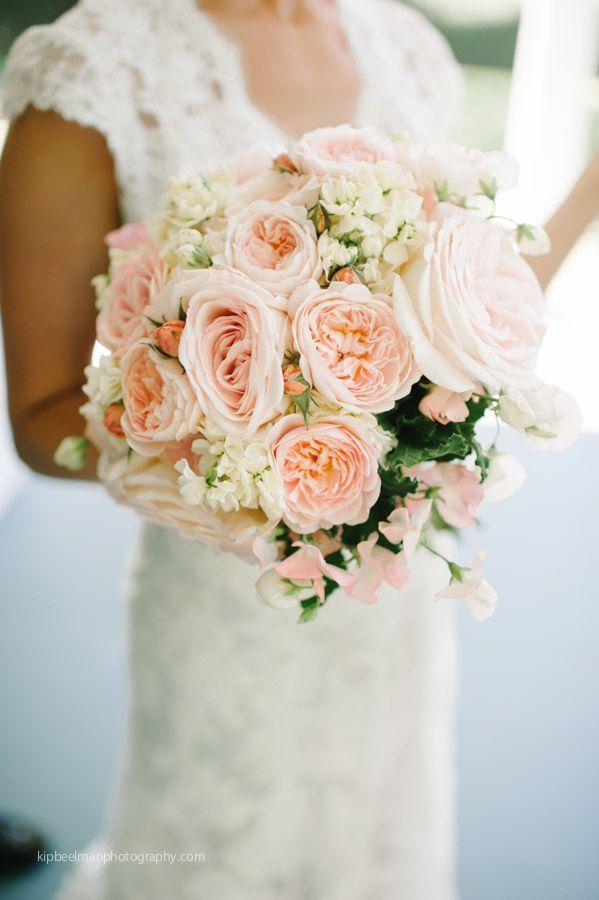 23 best wedding greenery - agonis images on pinterest   bridal