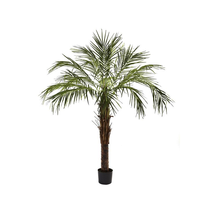 nearly natural 6-ft. Robellini Palm Tree, Green