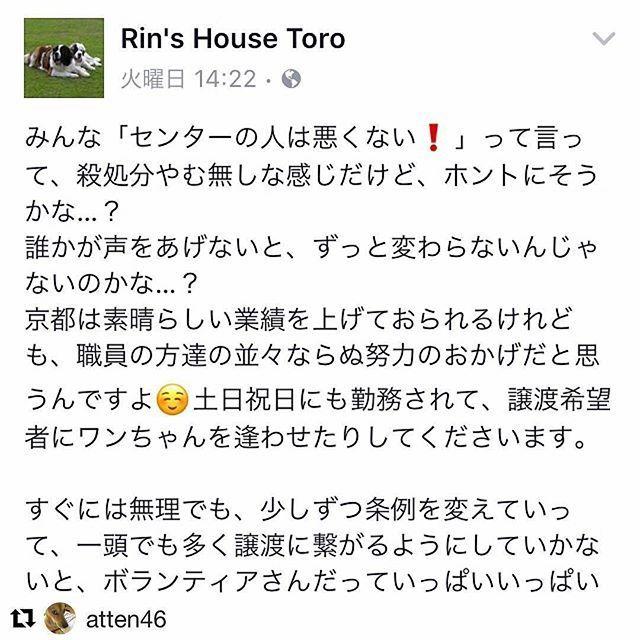 @Regrann from @minnaheiwa -  #Repost @atten46 (@get_repost) ・・・ FacebookでRin's House toroさんのお言葉にとても共感したのでインスタでシェアさしていただきます。 京都市の殺処分についての考えに感動し鳥肌が立ちました😢長いですが最後まで読んでみてください🙇♀️ 👇👇👇 ㆍ 貫いた「京都市は殺処分機は使っていません、要りませんよね」という態度、京都動物愛護センター ㆍ 殺処分機での処分は間接的な行為、動物の最期を看取ってあげるのが、決断を下す獣医師の責務  ㆍ 「殺処分機を使わない」京都動物愛護センター、殺処分機廃止(使用しない)に尽力された「影の立役者」と言われている獣医師・河野誠さんを訪問させて頂きました。 ㆍ 政令指定都市と都道府県が共同で運営する愛護センターとしては全国初となる京都動物愛護センター。 H24年から構想に入り、H25年に有識者を交えた構想検討委員会が発足、H26年に着工というタイムスケジュールでH27年に開館しました。 ㆍ…