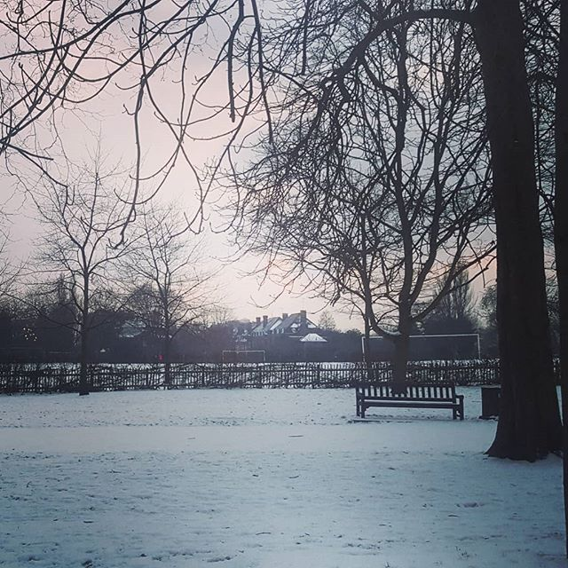 White beautiful London! #londoninwhite #london #snow #londonparks #visitlondon #lovelondon #bestcity #hollandpark #kensington #silencebeforethestorm #dontstop #magic