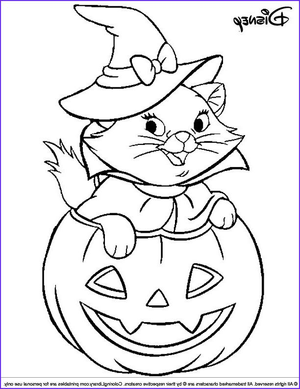 Coloring Pages For Adults Cat Kitten Bats Halloween Pumpkin