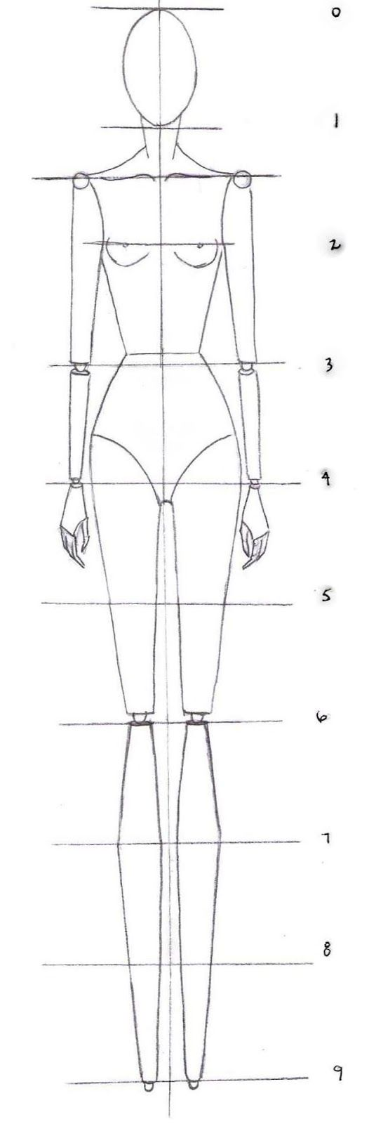 how to drawing the proportions of a fashion croquis
