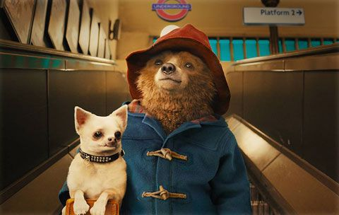 Paddington Hits Theaters Today! See 7 Celebrity-Inspired Ways to Steal the Adorable Bear's Style  #InStyle