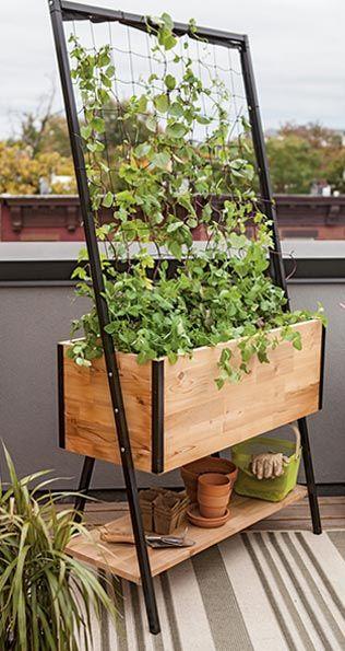 Best 25 Balcony garden ideas on Pinterest