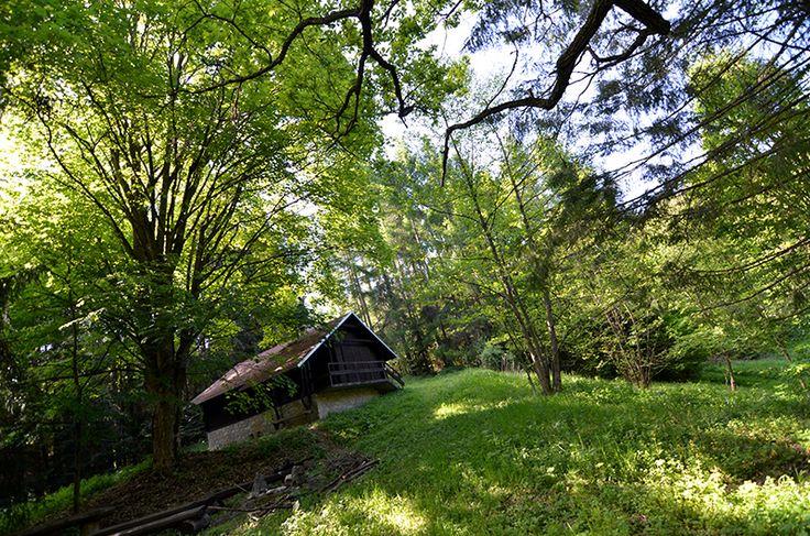 Pohodový okruh. Z Kováčovej je asfaltka s miernym stúpaním. Odtiaľ na Danielovu chatu je les, chodník široký, len pozor na popadané stromy po kalamite, môžu byť cez cestu, záleží od lesných robotníkov :) Zhora sa dá ísť po zelenej turistickej značke na Tŕnie, alebo kvalitnou asfaltkou (lesnou) do Turovej a späť do Kováčovej. Výhľady veľmi nie sú, ale zato parádne stromy - buky, smreky, bresty, javor...