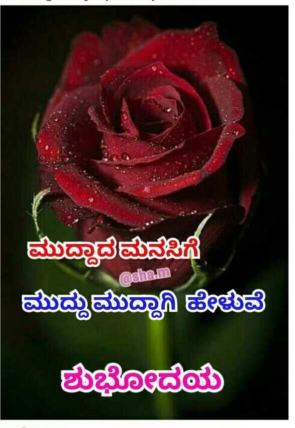 Pin On Kannada