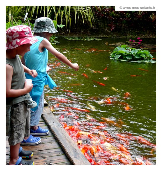 guadeloupe-enfant-jardin-botanique-deshaies