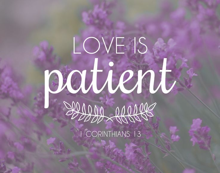 Bible Verses About Love Is Patient