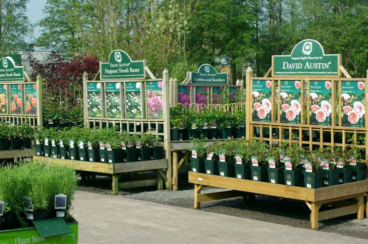526 best nursery display ideas images on pinterest for Garden centre