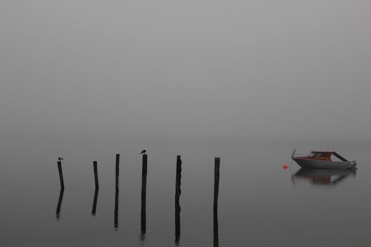 Lake Te Anau on a foggy morning