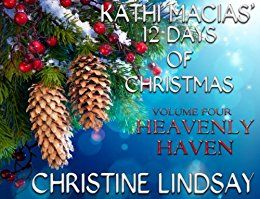 Looking for a short Xmas romance for only 99 cents on your commute? Can an avalanche save a marriage?