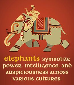 Symbolism of elephants in various cultures