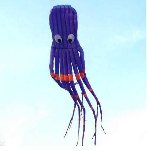 7M Large Octopus Parafoil Kite with Handle  String Beach Park Garden Outdoor Fun ** Read more  at the image link.