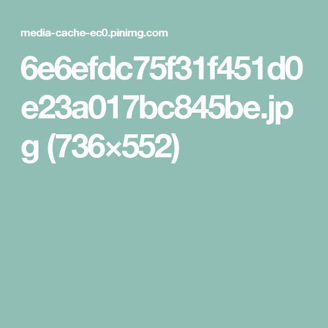 6e6efdc75f31f451d0e23a017bc845be.jpg (736×552)