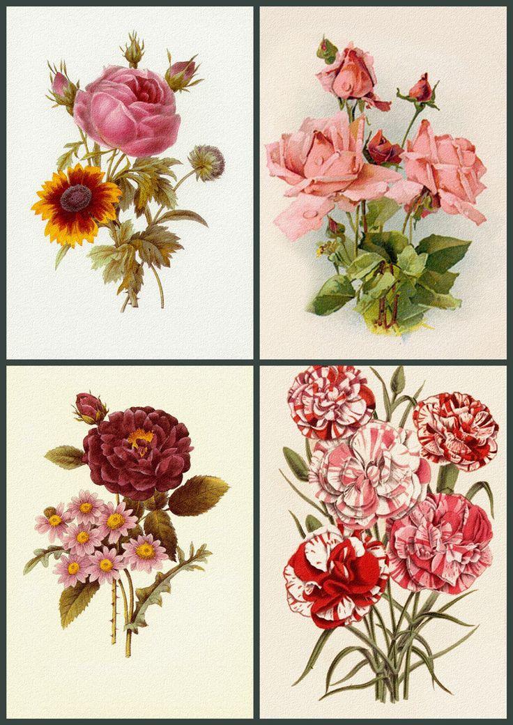 Four Vintage Prints - Collage Sheet. ..♥..Nims..♥