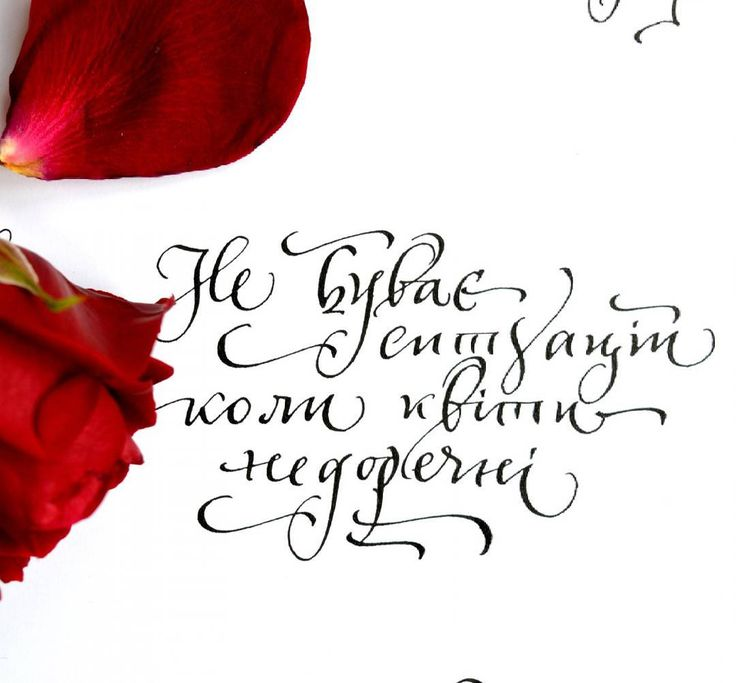 105 вподобань, 4 коментарів – Майстерня каліграфії MonkeyART (@monkeyart.com.ua) в Instagram: «#weddingcalligraphy #каллиграфия #каллиграффити #почерк #скоропись #savethedate #calligrafia…»