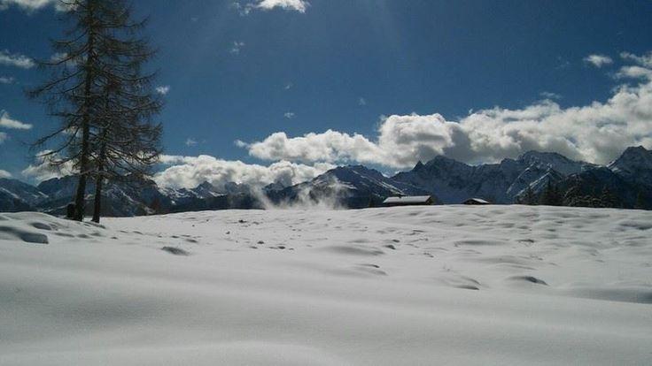Ein Winter ohne Schnee, tut den Bäumen weh.#schnee #bäume #aussicht #mountain #tuffbad #schneeschuhwandern #langlaufen