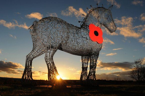 Andy Scott has added a poppy to his Heavy Horse sculpture to raise awareness of Rememberance Day. It looks amazing, just a bit sad that still people aren't bothered about wearing a poppy.