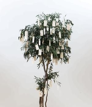 Wish Tree by Yoko Ono. Neat idea for incorporating into counseling groups, early childhood work or into a classroom/school.