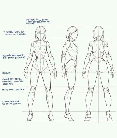 Female body props
