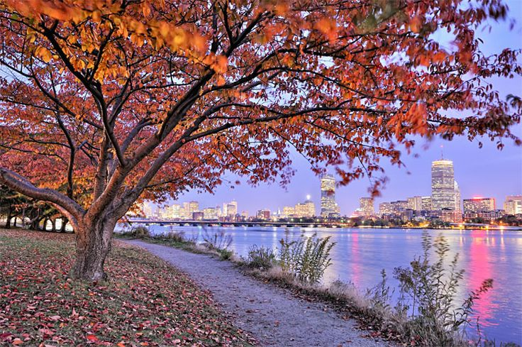 29 Reasons to Love Boston:  The trees that line the Charles in the fall are electric, lighting up the river's running path...it's the most incredible, beautiful thing