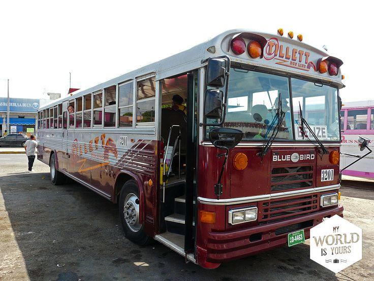 De goedkoopste en meest frequente is een tweedeklas bus (chicken bus) naar Belize City die vertrekt van Nuevo Mercado. Als je een rijtje oude schoolbussen ziet staan, een man die als twee druppels op Bob Marley lijkt en een geldwisselaar die met stapels bankbiljetten loopt te wapperen, dan zit je goed. #ChickenBus #Chetumal #Belize #Mexico