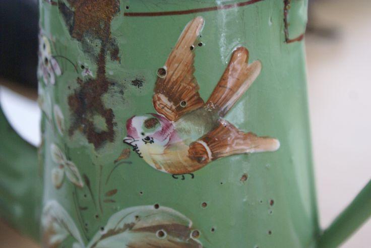 Prachtig vogeltje op een oude emaille koffiekan