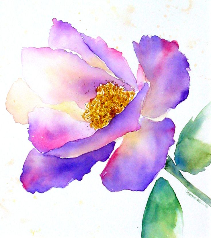 локации акварельные цветы картинки даже программа реанимации