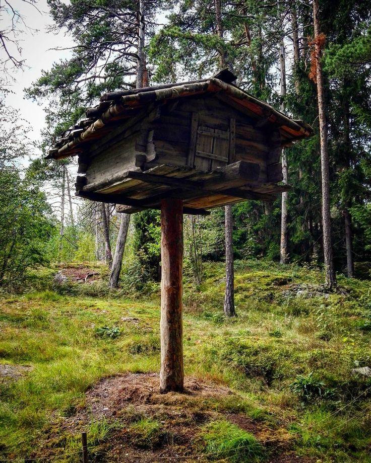 You can see old tree houses in Seurasaari. #seurasaari #finland #helsinki #visitfinland #visithelsinki #house #tree #old #forest #igers_finland #travel