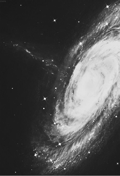 #blackandwhite spiral galaxy / space / astronomy photography