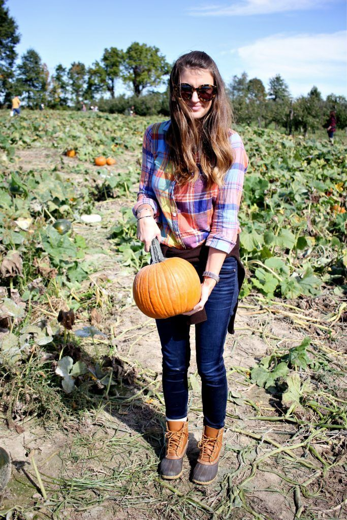 pumpkin picking at lynd fruit farm in new albany, ohio // girl about columbus